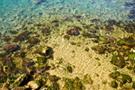 Kroatien - Klares Wasser II