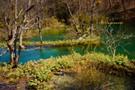Kroatien - Plitvicer Seen IV