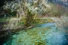 Kroatien - Plitvicer Seen X