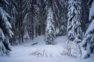 Schwarzwald 9