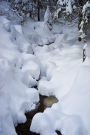 Schwarzwald 16