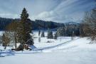 Schwarzwald 20