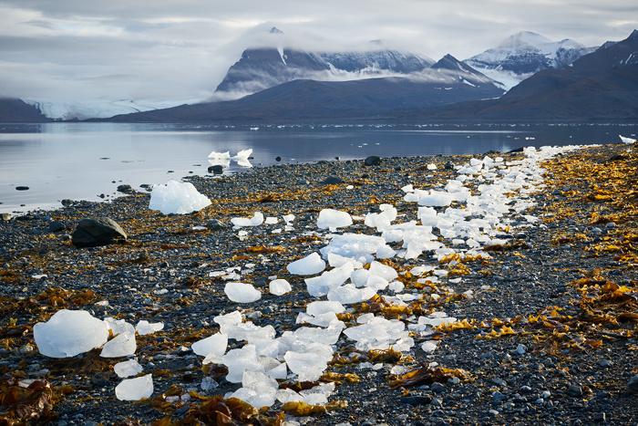 Spitzbergen 19