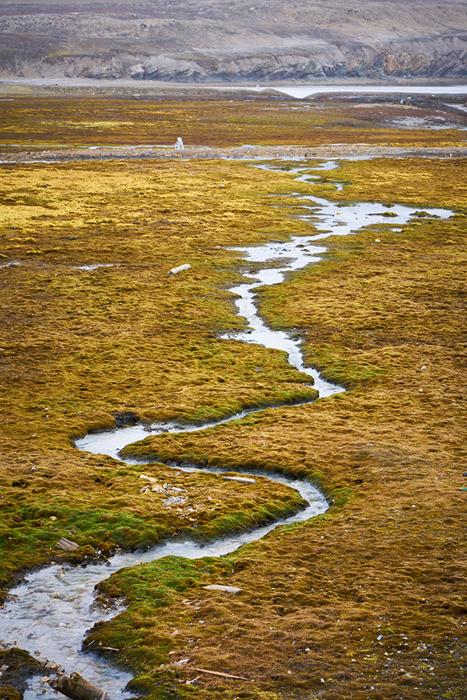 Spitzbergen 45
