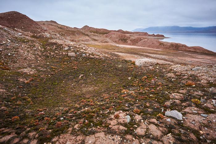 Spitzbergen 89