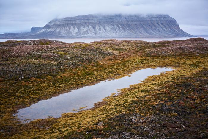 Spitzbergen 94