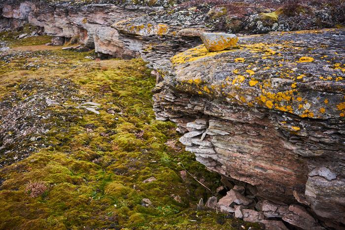 Spitzbergen 95