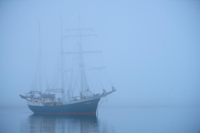 Spitzbergen 99