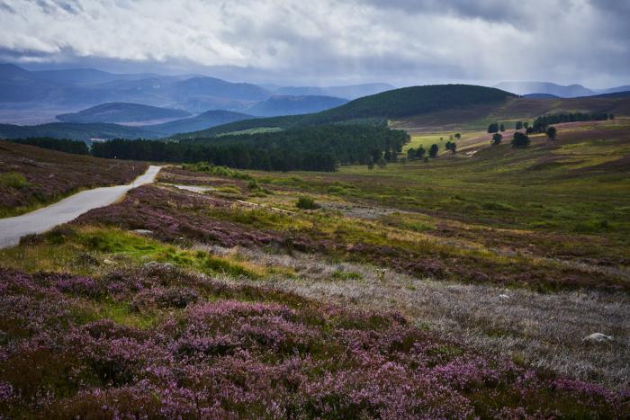 Schottland 31